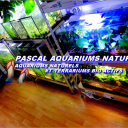 icon Pascal Aquariums Naturels