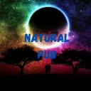 Icône 🌴 I Natural pub