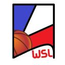 icon World simulation league