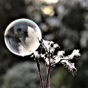 serveur La bulle