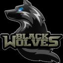 icon The Black Wolves Of Helheim®