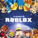 icon Roblox fr