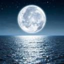 Icône MoonLight