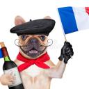 icon {RP} La France du XXe siècle