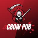 icon Crowpub fr