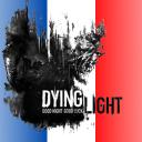 icon 🇫🇷   Dying Light / DevTool+