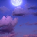icon 🌙•Moon