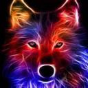icon Wolf Pub