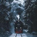 Icon Harry Potter : Lêres des marauders