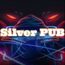 Icon 🥇   Silver Pub