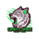 Icône Upsyt Opex
